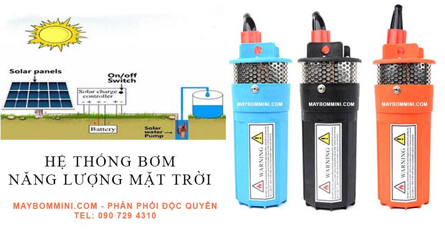 may-bom-chim-12v-nang-luong-mat-troi-maybommini