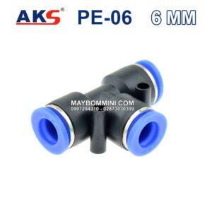 AKS PE 06