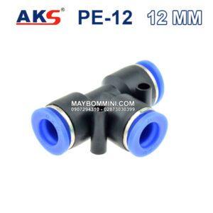 AKS PE 12