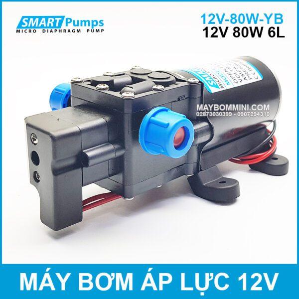 Bom Ap Luc Mini 12v 80W Smartpumps