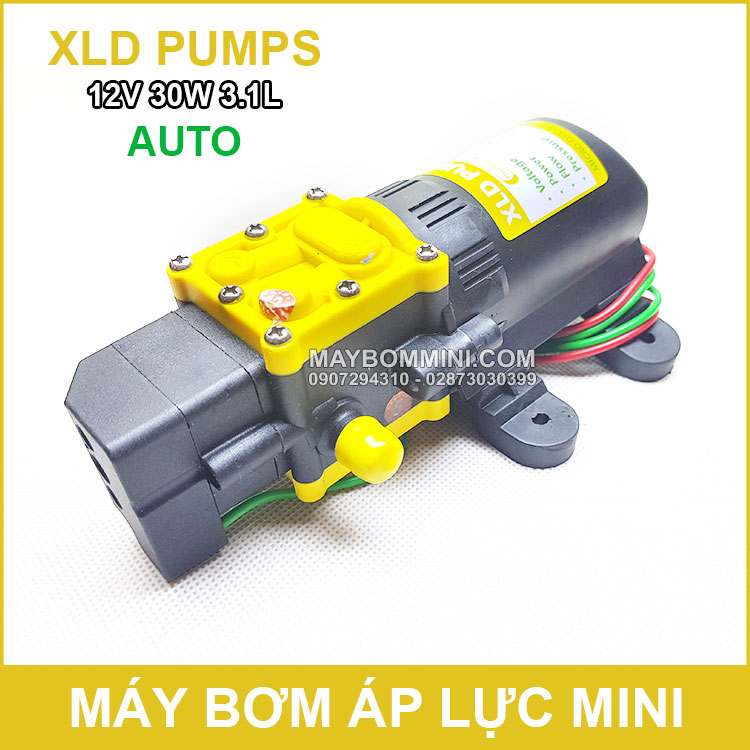 Bom Nuoc Mini 12v 30w XLD Auto