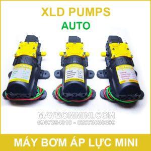 Bom Nuoc Mini Ap Luc Tu Dong XLD