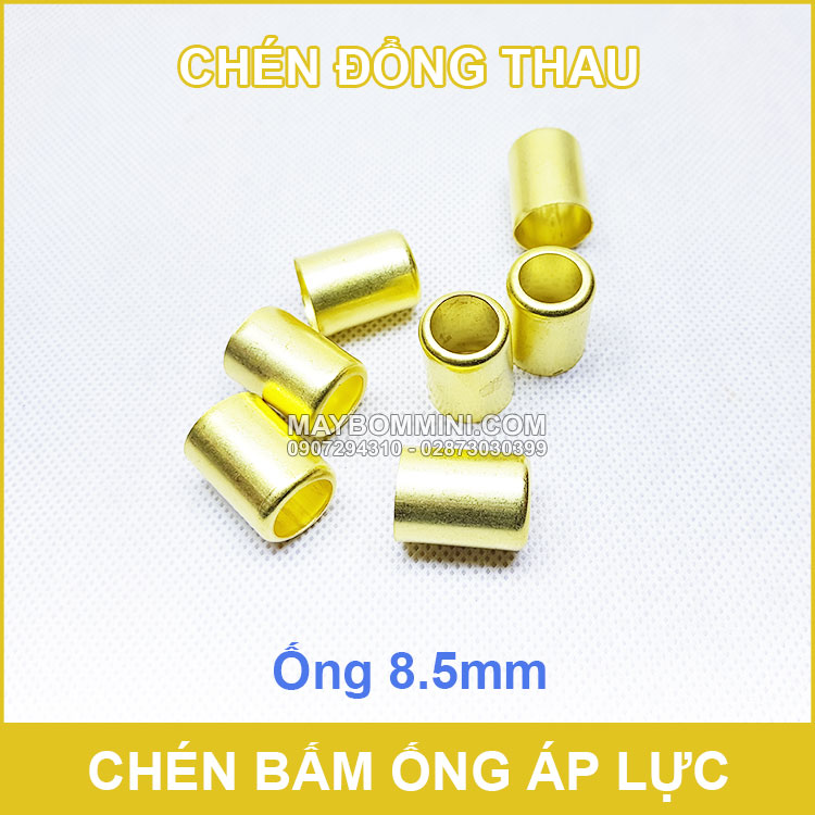Chen Bam Cost Dong Thao