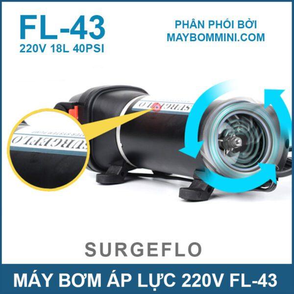 FL43 220v 40psi