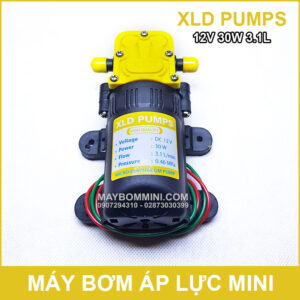 May Bom Ap Luc Mini 12V 30W XLD