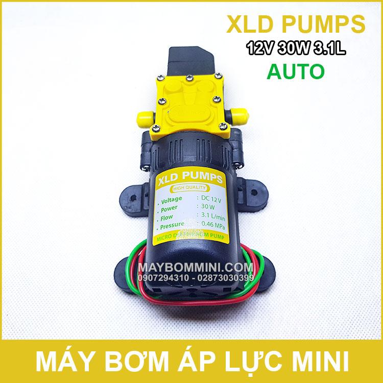 May Bom Ap Luc Mini 12V 30W XLD Tu Dong