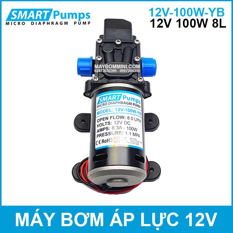 May Bom Ap Luc Mini Smarpumps 12V 100W 8L