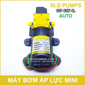 May Bom Mini 12V 42W 4L XLD Tu Dong