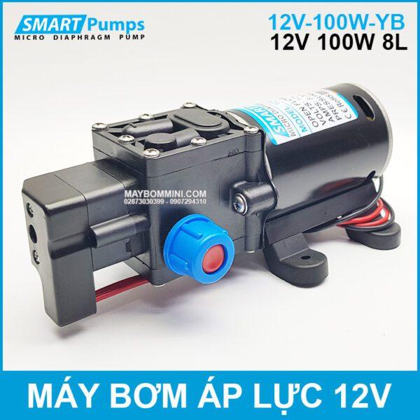May Xit Rua Mini 12v 100w Smartpumps