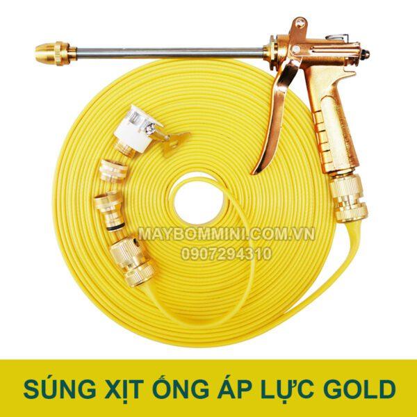 Bo Sung Va Ong Ap Luc Gold.jpg