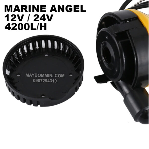 Cau Tao May Bom Chim 12v Marine Angel
