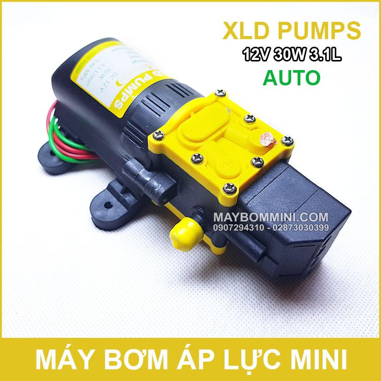 Chuyen Ban Bom Nuoc Mini Gia Re 12v 30w Auto