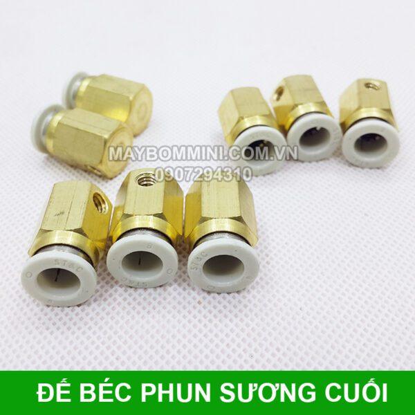 De Gan Bec Cuoi Phun Suong.jpg