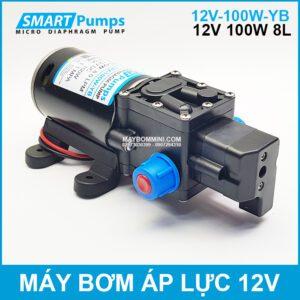 May Bom Ap Luc 12v 100w