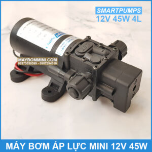 May Bom Ap Luc Mini 12v 45w 4l
