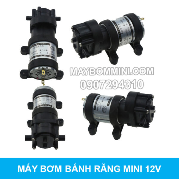 May Bom Mini Banh Rang 12v 4l