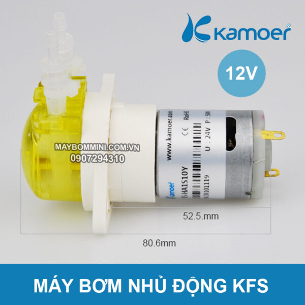 May Bom Nhu Dong 24v KFS