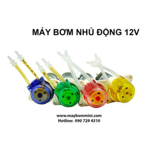 May Bom Nuoc Mini 12v 6.jpg