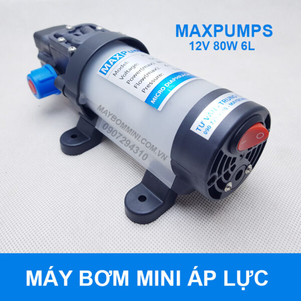 May Bom Nuoc Mini 12v Ap Luc.jpg