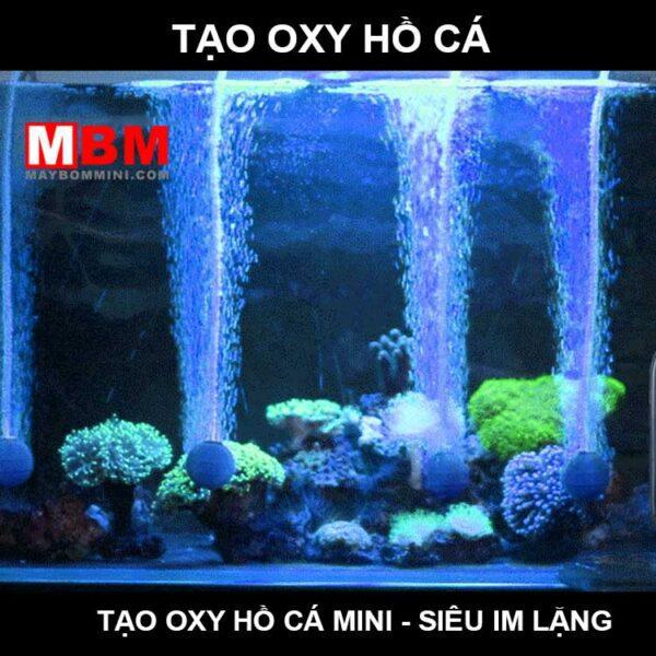 May Tao Oxy Ho Ca Canh.jpg