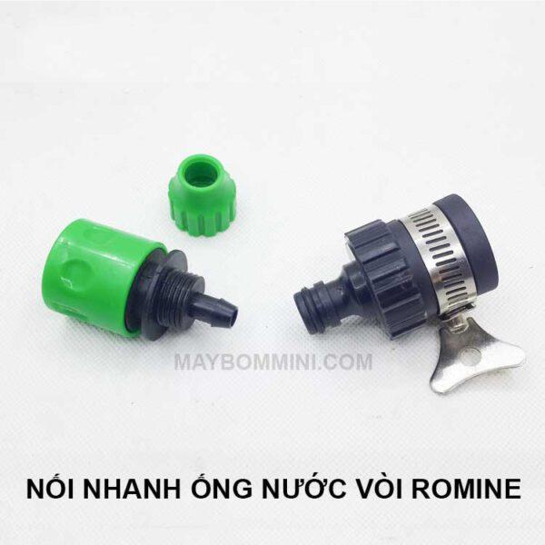 Noi Nhanh Ong Nuoc 1.jpg