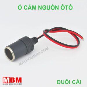 O Cam Nguon Oto Duoi Cai.jpg
