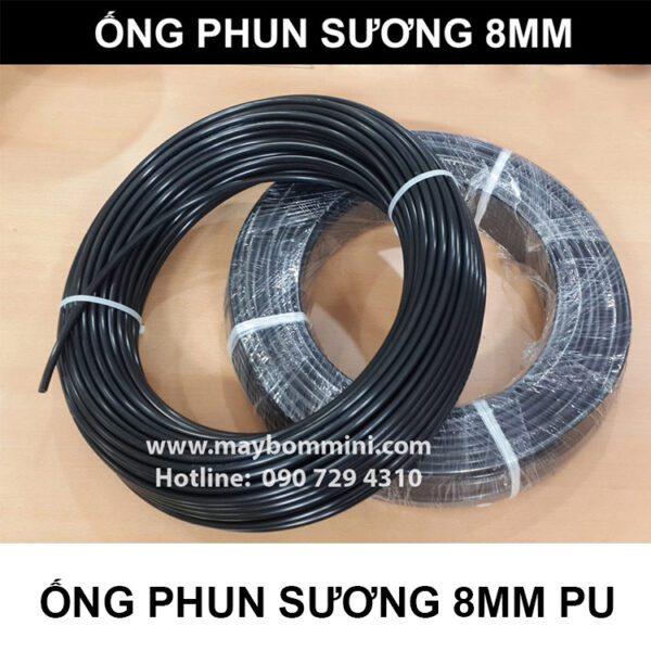 Ong Phun Suong 8mm.jpg
