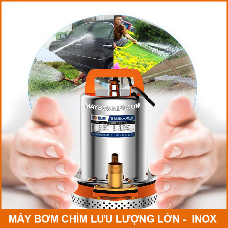 Sung May Bom Nuoc Chim Nuoc Ngap