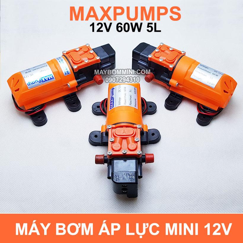 Bom Nuoc Mini 12v 5L