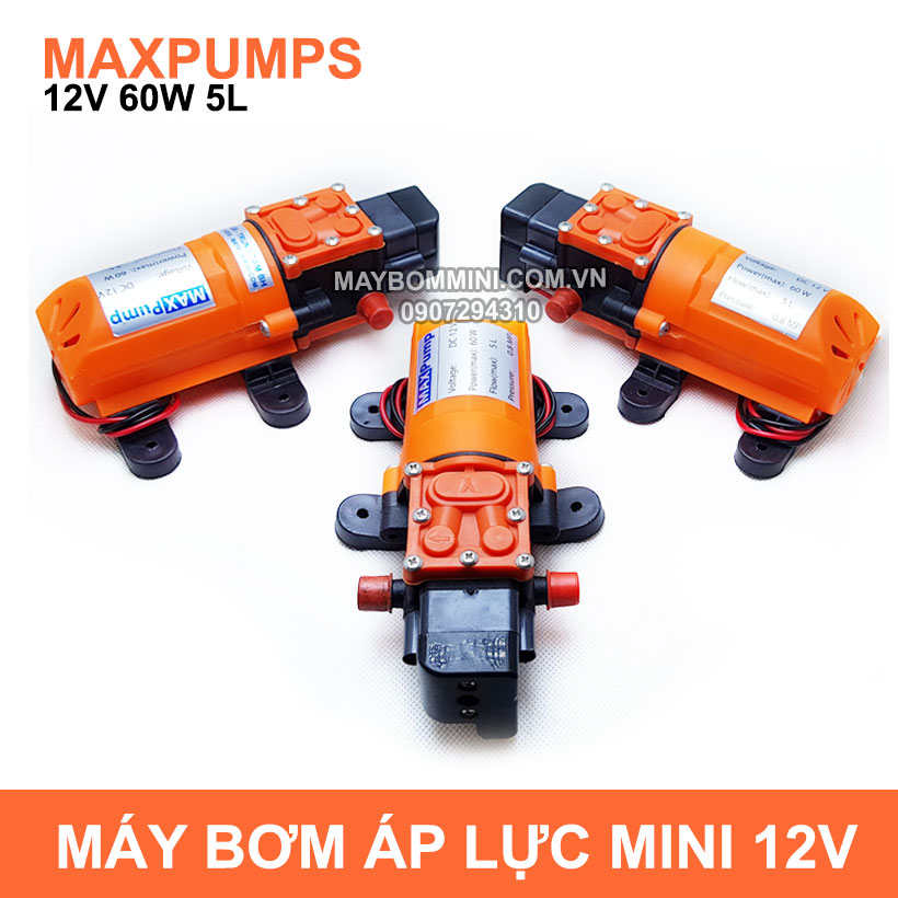 May Bom Mini Ap Luc 12v 60w Maxpumps