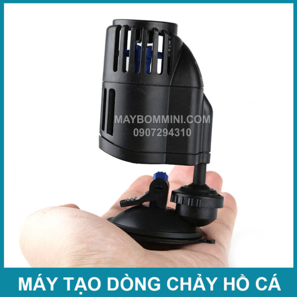 Tao Luong Nuoc Trong Be Ca