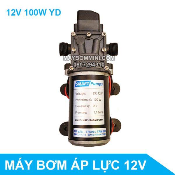May Bom Ap Luc 12v 100W YD