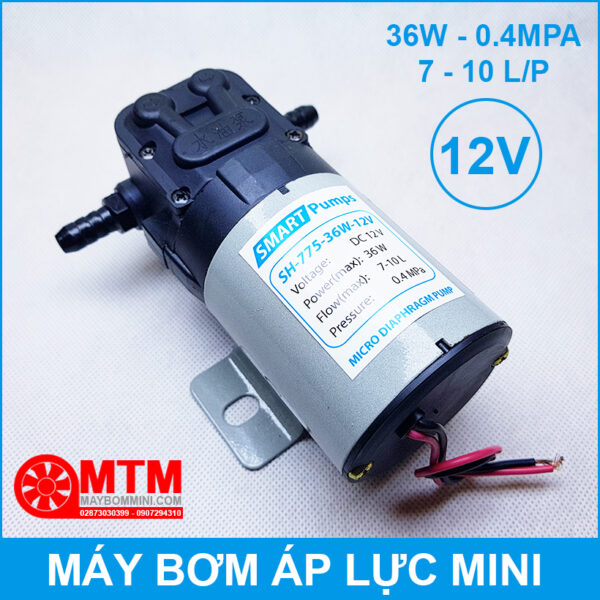 May Bom Dau 12V Ap Luc Mini