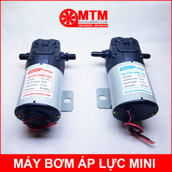 May Bom Mini 12v 24v SH