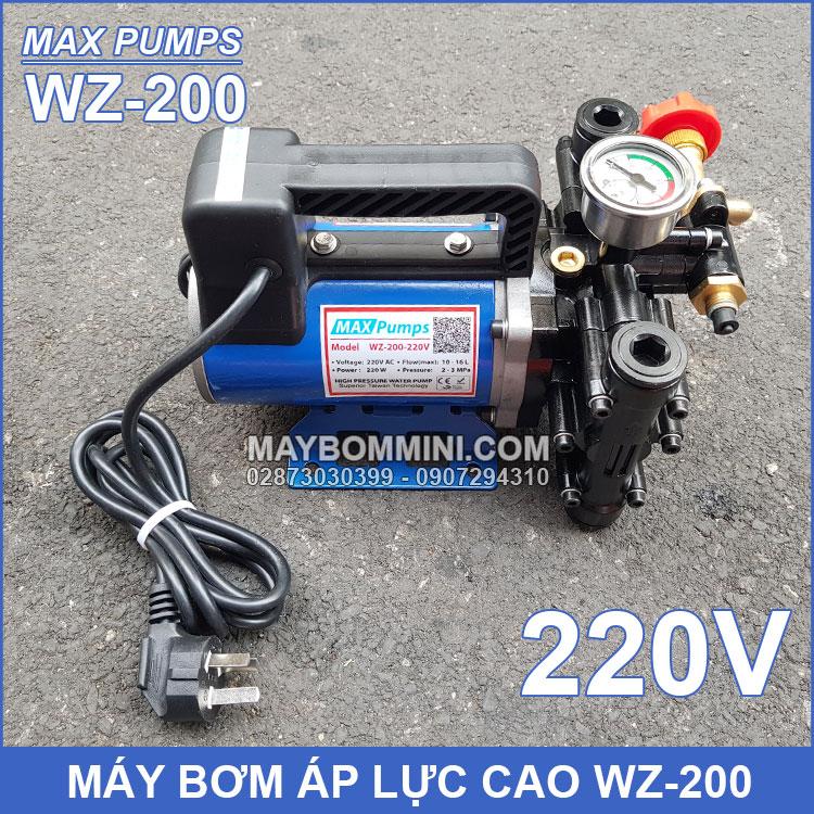 May Bom Phun Thuoc Sau 220v 200W