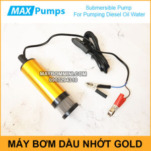 Pumping Diesel Oil Water 12V 24V DC