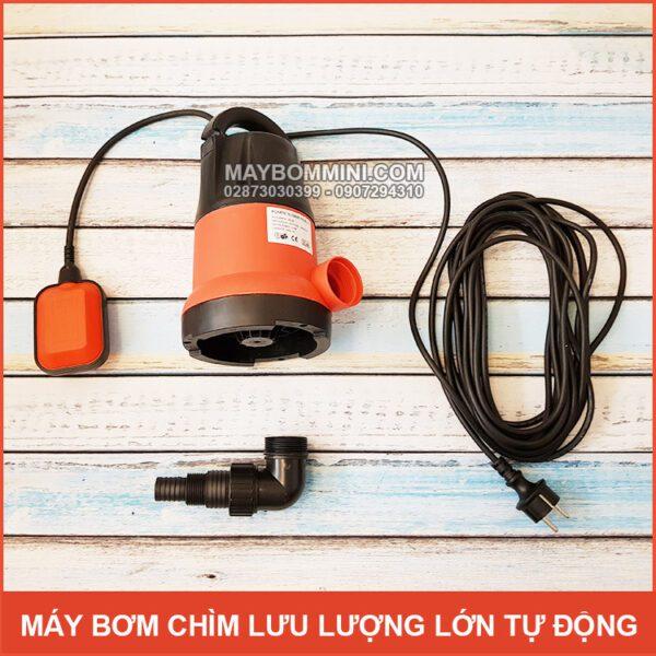 Bom Nuoc Mini Tha Chim Luu Luong Lon