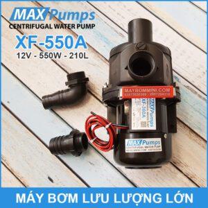May Bom Luu Luong Lon 12V 220L 550A MAXPUMS