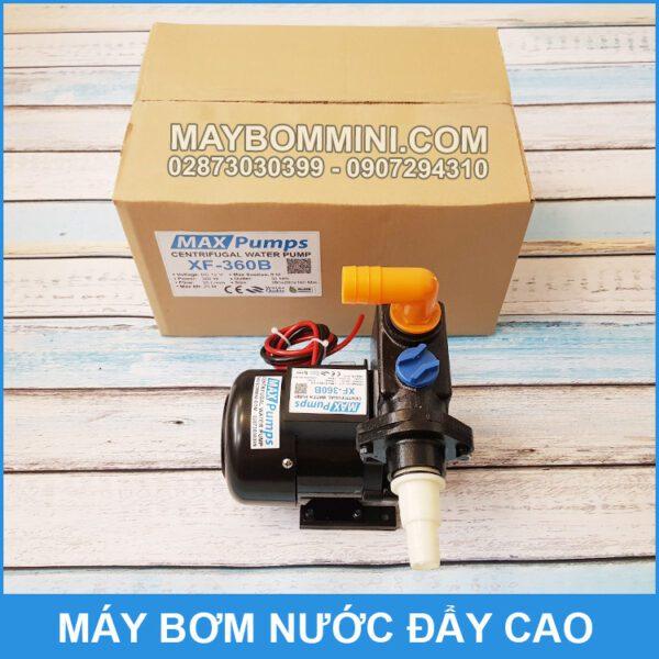 Bom Day Cao 12V MAXPUMPS