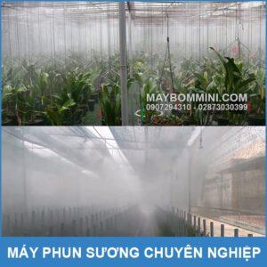 Phun Suong Tuoi Lan Nha Vuon