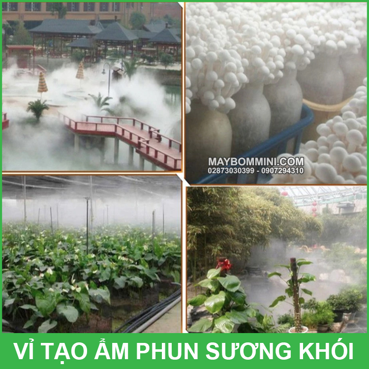 Vi Tao Am Phun Suong