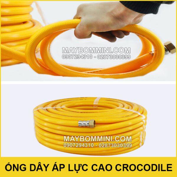 Ban Ong Day Ca Sau Chinh Hang