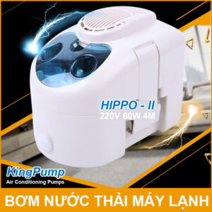 May Bom Nuoc Thai May Lanh 220V Hippo 2 Kingpumps Lazada