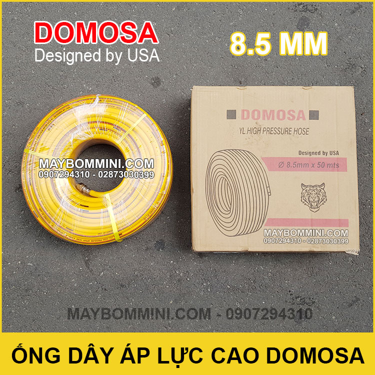 Ong Day Ap Luc Cao Domosa USA