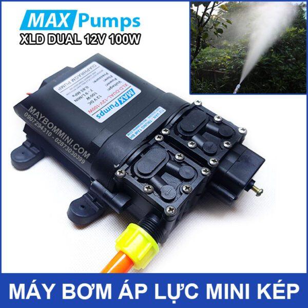 Ban May Bom Nuoc Mini Ap Luc 12v 100w Smartpumps