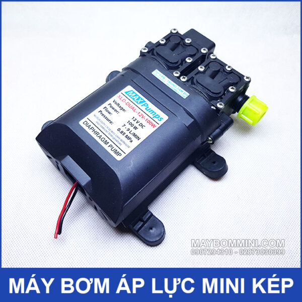 Diaphragm Pump 12v 100W