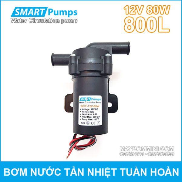 May Bom Nuoc Tan Hiet Tuan Hoan 12V 80W 800L Smartpumps