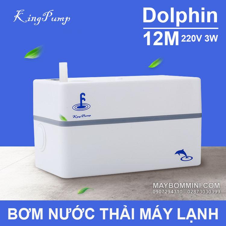 May Bom Nuoc Thai May Lanh 220V 12M Dolphin Kingpumps
