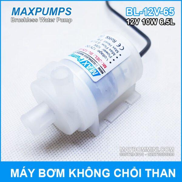 Bom Nuoc Mini Maxpumps 12v 10w