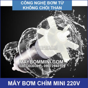 May Bom Mini Khong Choi Than 220v